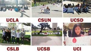 manifestaciones-universades