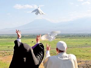 palomas-de-la-paz